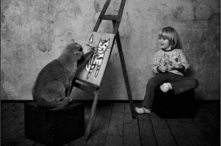 Знакомство котенка с семьей