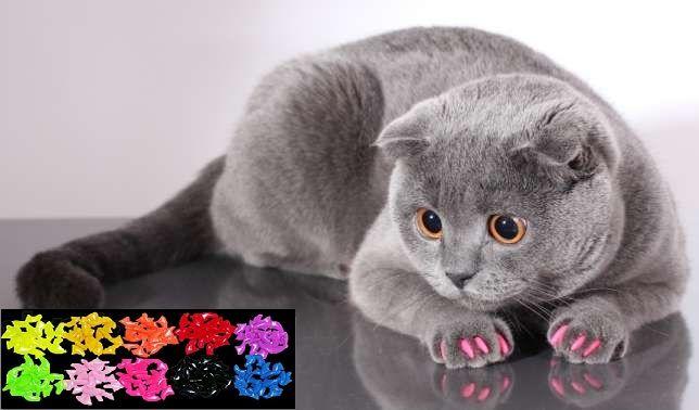 Накладные ногти для кошек