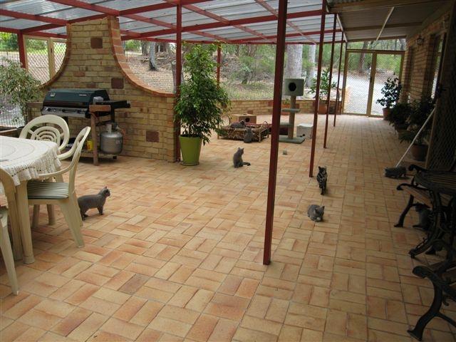 Домик для кошки своими руками: лучшие идеи и мастер 2