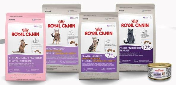 Витамины для котов канин